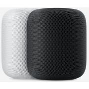 Homepod Gris Sideral